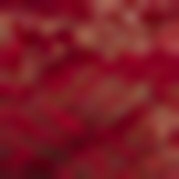 Culotte Rouge Cherry en Microfibre et dentelle Generous Essentiel, , DIM