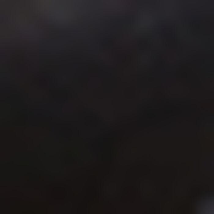 Soutien-gorge Foulard Ampliforme Noir en dentelle Mod de Dim, , DIM