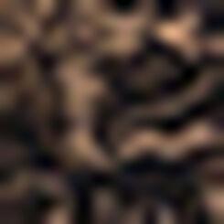 Culotte Noire femme en microfibre et dentelle Generous Essentiel, , DIM