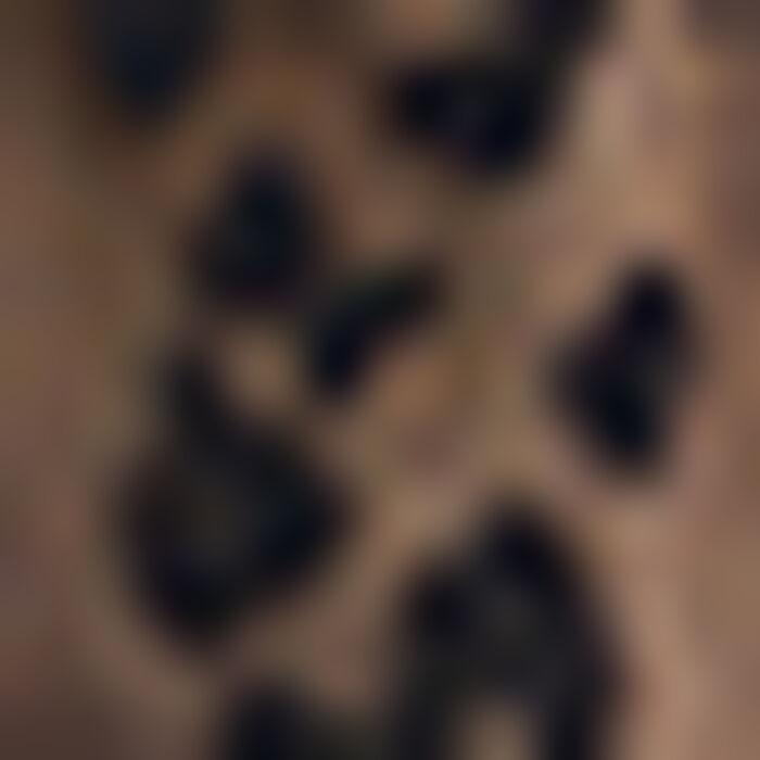 Socquettes noires pour Femme motif Léopard tricoté Style, , DIM