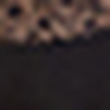 Bandeau Noir Emboîtant en dentelle pour femme Sublime Dentelle, , DIM