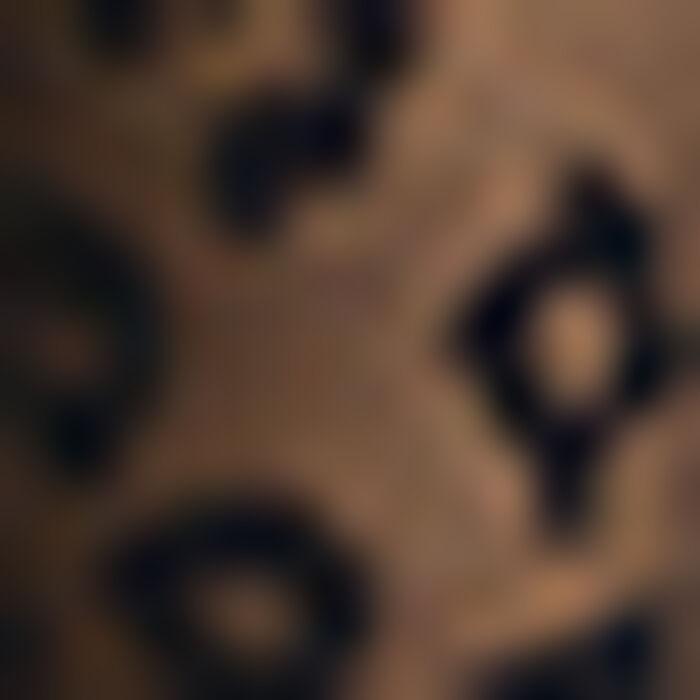 Collant noir pour femme motif Léopard tricoté, , DIM